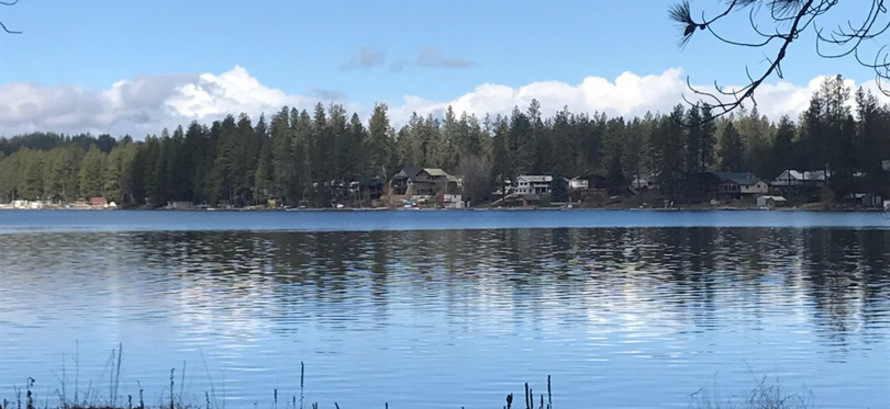 Loon Lake Property Owners Association - Milfoil